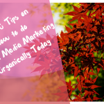 Top 10 Tips on How to do Social Media Marketing Organically Today